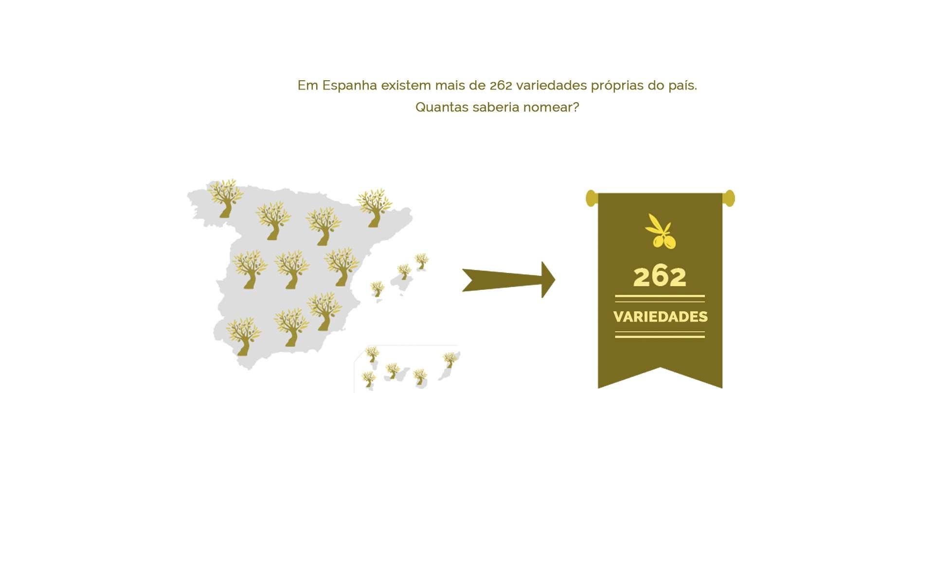 262 variedades do azeite de oliva cultivadas na Espanha
