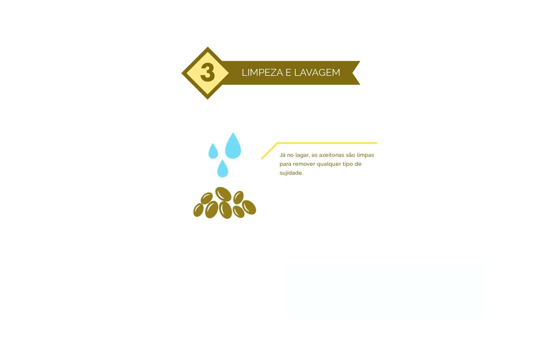 limpeza e lavagem do azeite de oliva