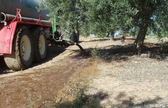 Gestão de resíduos líquidos procedentes dos lagares mediante a sua aplicação a fazendas de olivais