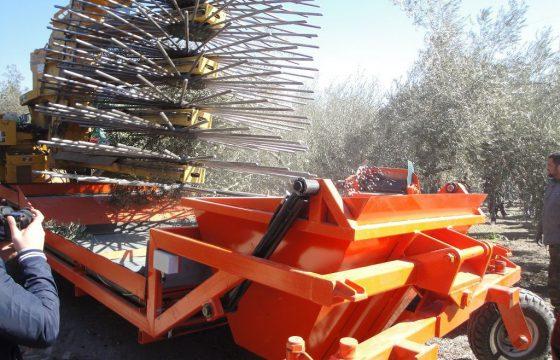 Inovações e novas tecnologias no olivar – MECAOLIVAR
