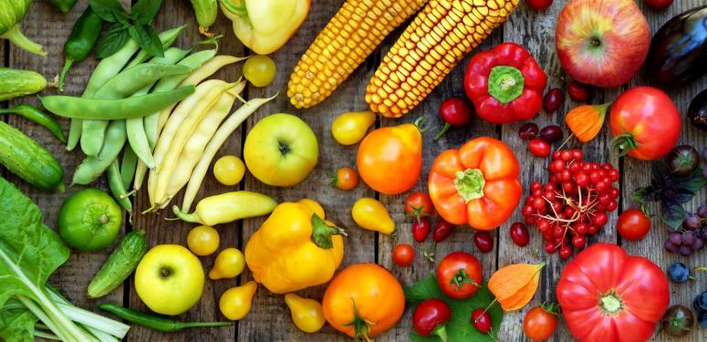 Una-se à moda dos produtos orgânicos